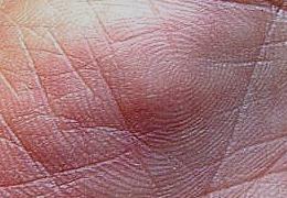 Documentare le caratteristiche della mano